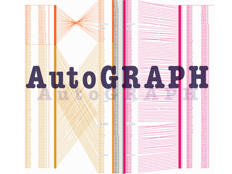 AutoGRAPH AutoGRAPH: An interactive web server for automating and visualizing comparative genome maps